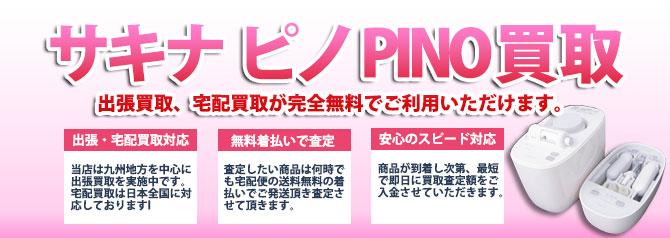 サキナ ピノ バナー画像