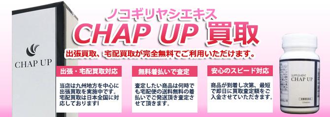 CHAP UP チャップアップ 育毛剤 バナー画像