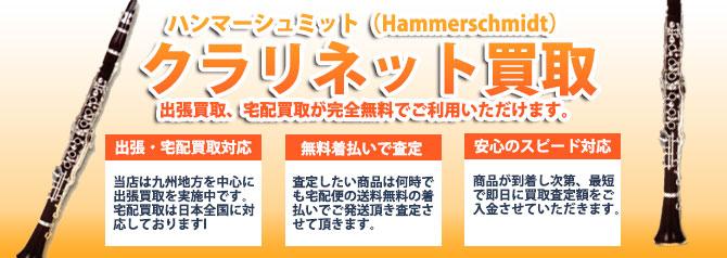 ハンマーシュミット(Hammerschmidt) バナー画像