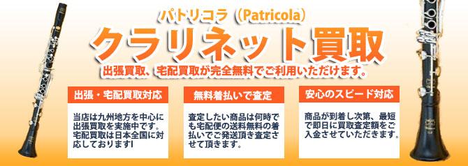 パトリコラ(Patricola) バナー画像