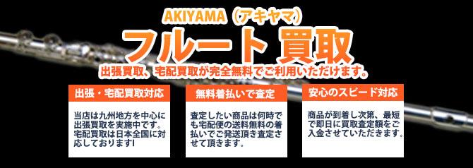 AKIYAMA(アキヤマ)フルート バナー画像