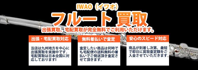 IWAO(イワオ)フルート バナー画像